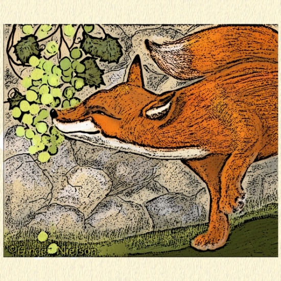 foxgrapes-hai