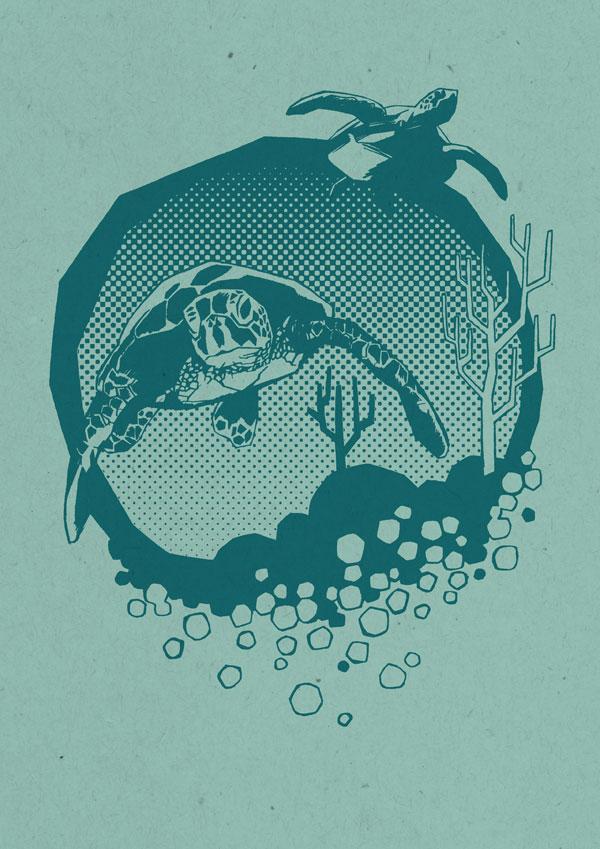 ed-tucker-hai-news-turtle