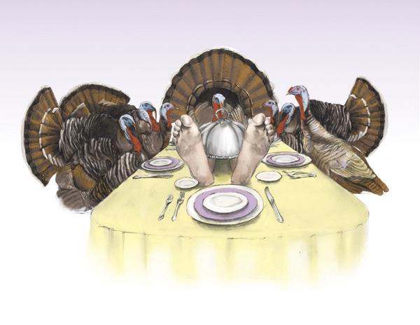 Thanksgiving-HAI