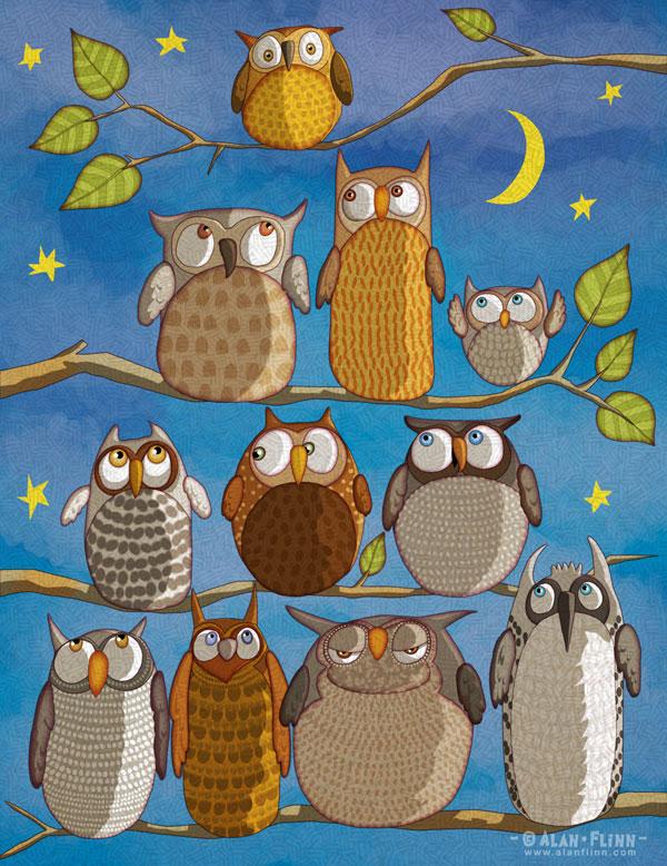 AF_Owls_HAI_N
