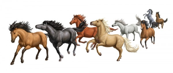 Eight_horse_Illustration_Elise_Martinson_Full_Illo