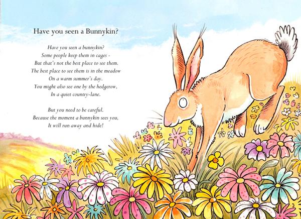 bunnykins
