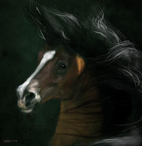 Bay-horse-20-mins