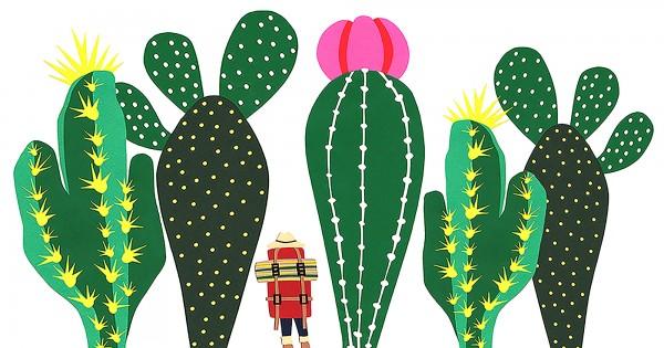 Cactus-Jungle-SMALL