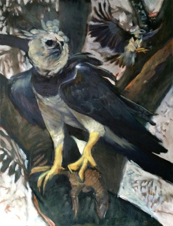 19-01-2016-harpy