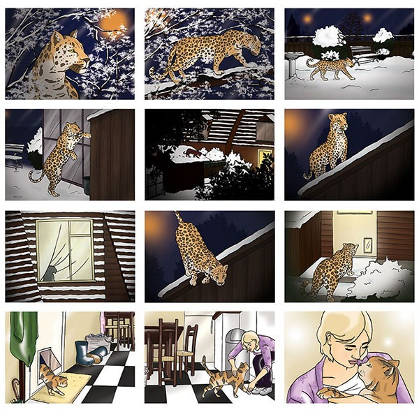 Whiskas-Storyboard-Georgie-fearnshai